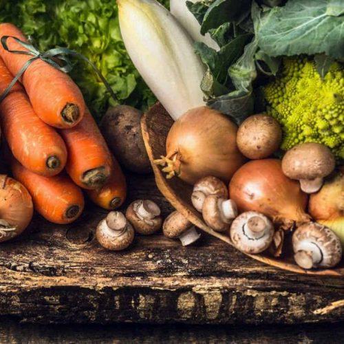 food-tank-food-waste-warriors-e1535923691590