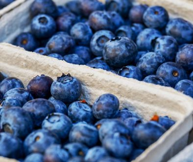 blueberries-3474854